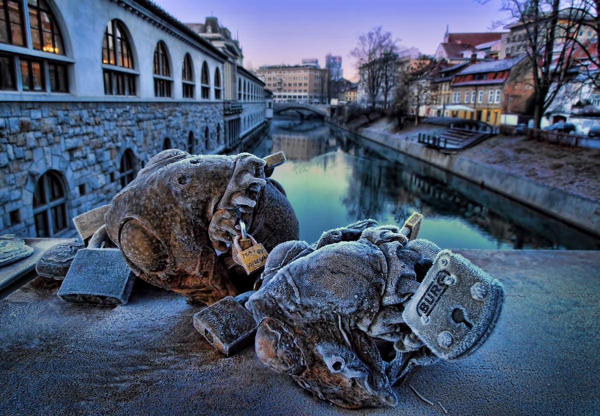 Butchers Bridge Visit Ljubljana