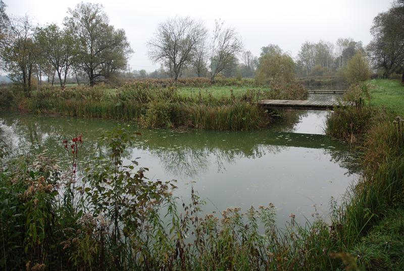 Rib ev ribnik pond near bistra visit ljubljana for Stocked fishing ponds near me