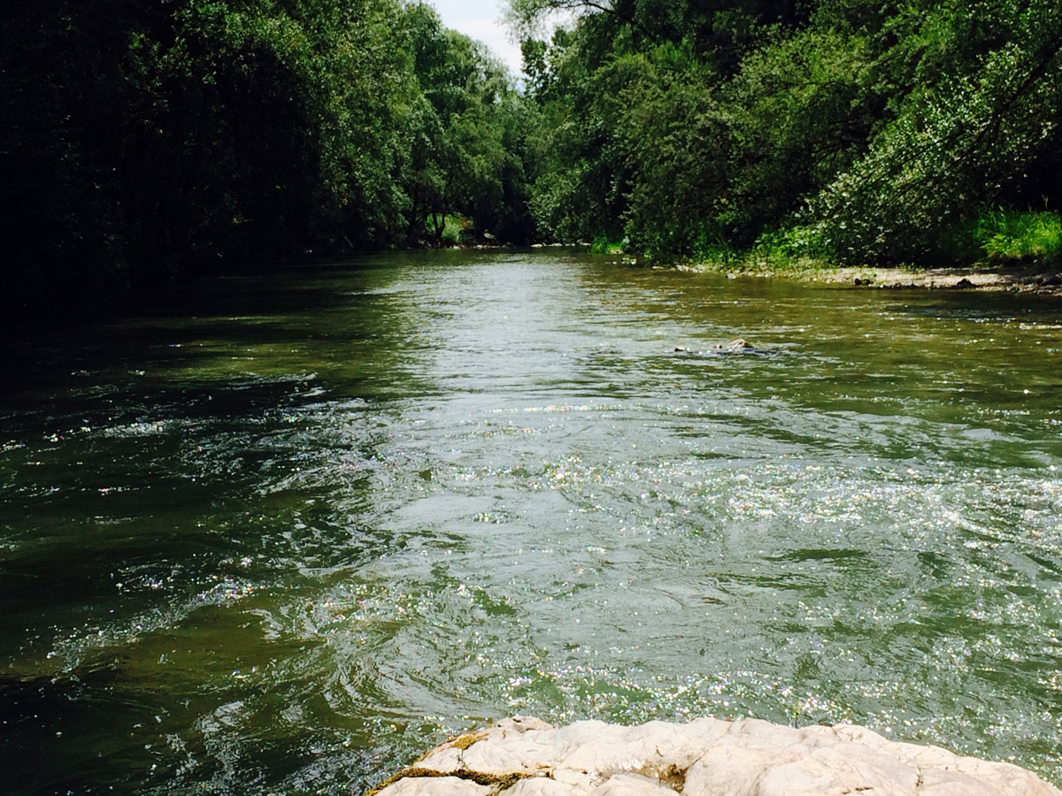Guided fly fishing trip visit ljubljana for Fly fishing trips