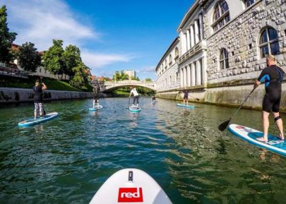 Stand-up paddling on the Ljubljanica