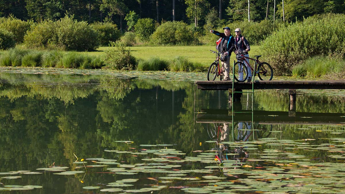 cycling in Ljubljana Marshes